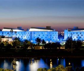 Sevilla acoge un congreso con más de 1.200 profesionales