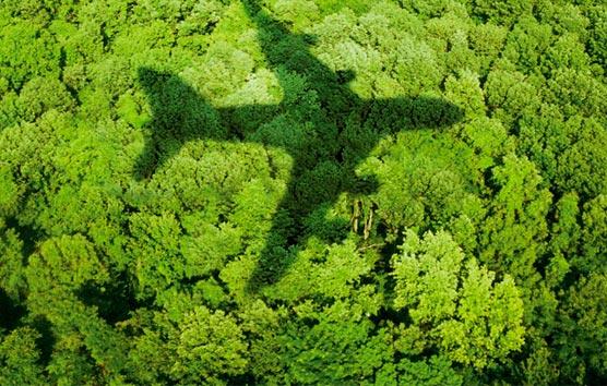 La sostenibilidad será clave en la organización de eventos corporativos