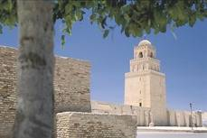 Las agencias de viajes de Túnez se incorporan a SNAV