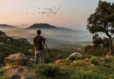 UNAV promueve el Turismo de aves en el destino Cádiz