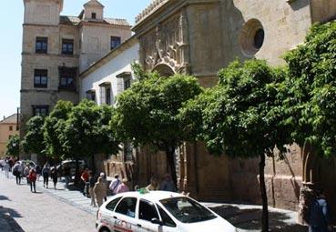 'Webinar' profesional del Palacio de Córdoba
