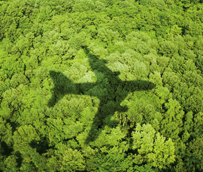 CEAV contribuirá a 'aumentar la cualificación de los agentes en temas ambientales' mediante el proyecto Turismo Verde